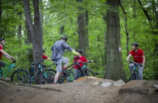 MTB trails in Queens