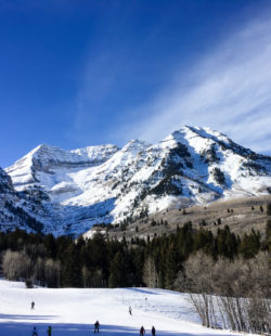 backcountry skiing wasatch