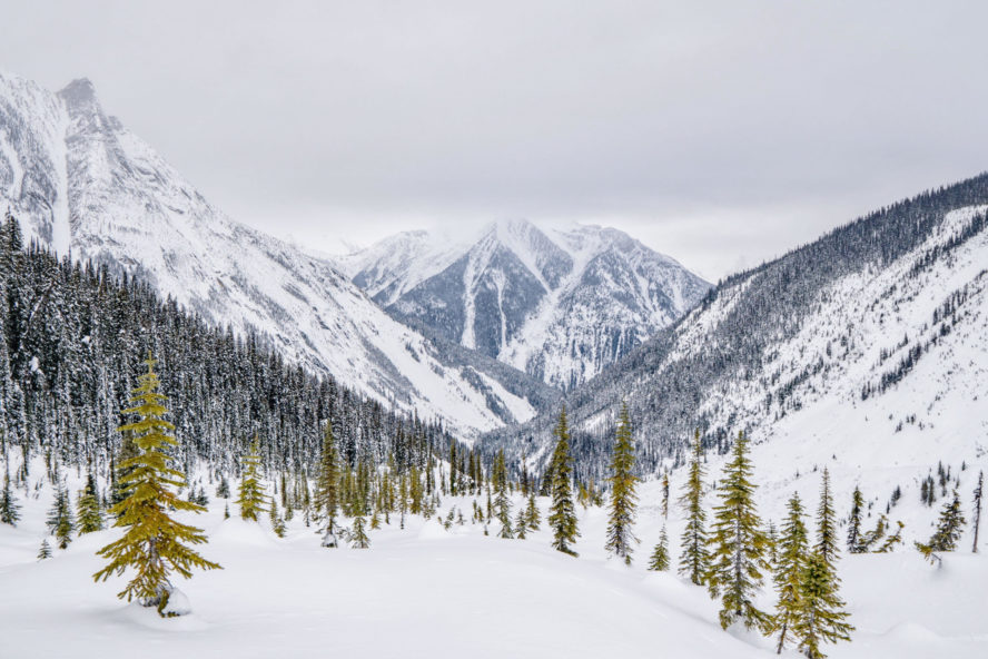 Epic snow shot at Rogers Pass