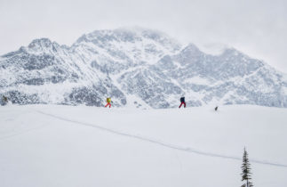 Backcountry at Rogers Pass