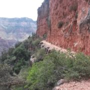the North Kaibab Trail