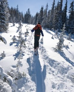 Backcountry Skiing in Loveland Pass